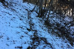 熊倉山日野コース途中の雪