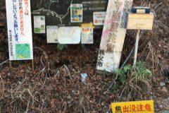 熊倉山城山コースの林道が横切る地点