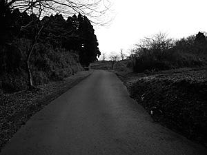 run20091230